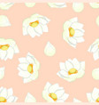 white indian lotus on light pink background vector image