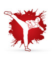 kung fu karate kick vector image