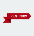 rent now red ribbon banner vector image