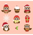 Christmas and New Years owls in funny costumes vector image