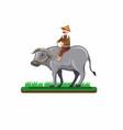 asian farmer man riding buffalo in rice field vector image vector image