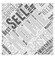 Home Selling Guide Word Cloud Concept vector image vector image