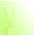 The abstract grass vector image vector image