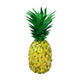low polygon yelllow pineapple vector image