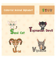 animal abc from letter s-v vector image