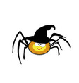 cute funny yellow cartoon spider wearing witch vector image