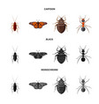 design of insect and fly sign set of vector image vector image