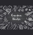 hand drawn herbs and spices on black vector image