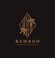 minimalist lineart bamboo tree logo icon vector image vector image