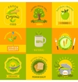Natural food emblems flat icons set vector image vector image