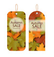 price tag autumn sale amazing discounts ima vector image vector image