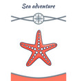 sea adventure starfish poster vector image vector image