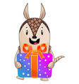 armadillo holding present on white background vector image vector image