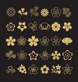 big set golden blossom flowers leaves and vector image