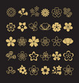 big set of golden blossom flowers leaves and vector image