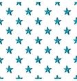Big star pattern cartoon style vector image vector image