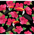 Floral seamless pattern with beautiful toucans vector image vector image