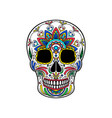 mexican sugar skull with colorful floral ornament vector image vector image