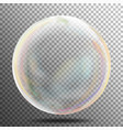 multicolored transparent soap bubble on a plaid vector image vector image