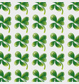 nature green clover plant background vector image