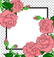 pink roses and dotes frame vector image