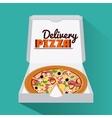 Pizza pie and carton box design vector image vector image