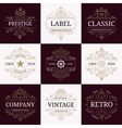 set retro vintage luxury logotypes vector image vector image