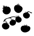 set silhouettes tomatoes collection vector image vector image