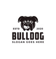 vintage retro bulldog logo icon vector image