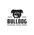 vintage retro bulldog logo icon vector image vector image