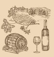 wine set hand drawn vineyad bottle of wine vector image vector image