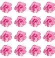 Desert rose flower on white vector image vector image
