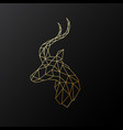 golden polygonal antelope isolated vector image vector image