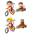 monkey riding bicycle trailer vector image