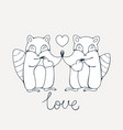 racoons in love vector image