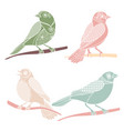 vintage decorative birds vector image vector image