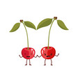 white background with realistic pair of cherry vector image vector image