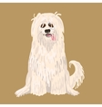 South Russian Shepherd Dog character vector image