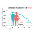 hormone production chart vector image