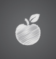 apple sketch logo doodle icon vector image