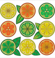 Decorative oranges lemons and limes vector image