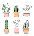 hand drawn outline cactus with color vector image vector image