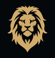 lion head gold golden logo template vector image
