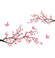 sacura branches vector image vector image