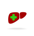 Liver with a medical cross logo Green and red vector image