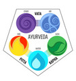 ayurveda elements and doshas icons vector image