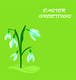 easter snowdrops vector image vector image