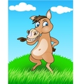 horse in the wild vector image