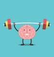 strong brain with barbell vector image