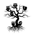 black owls on old tree tree silhouette with roots